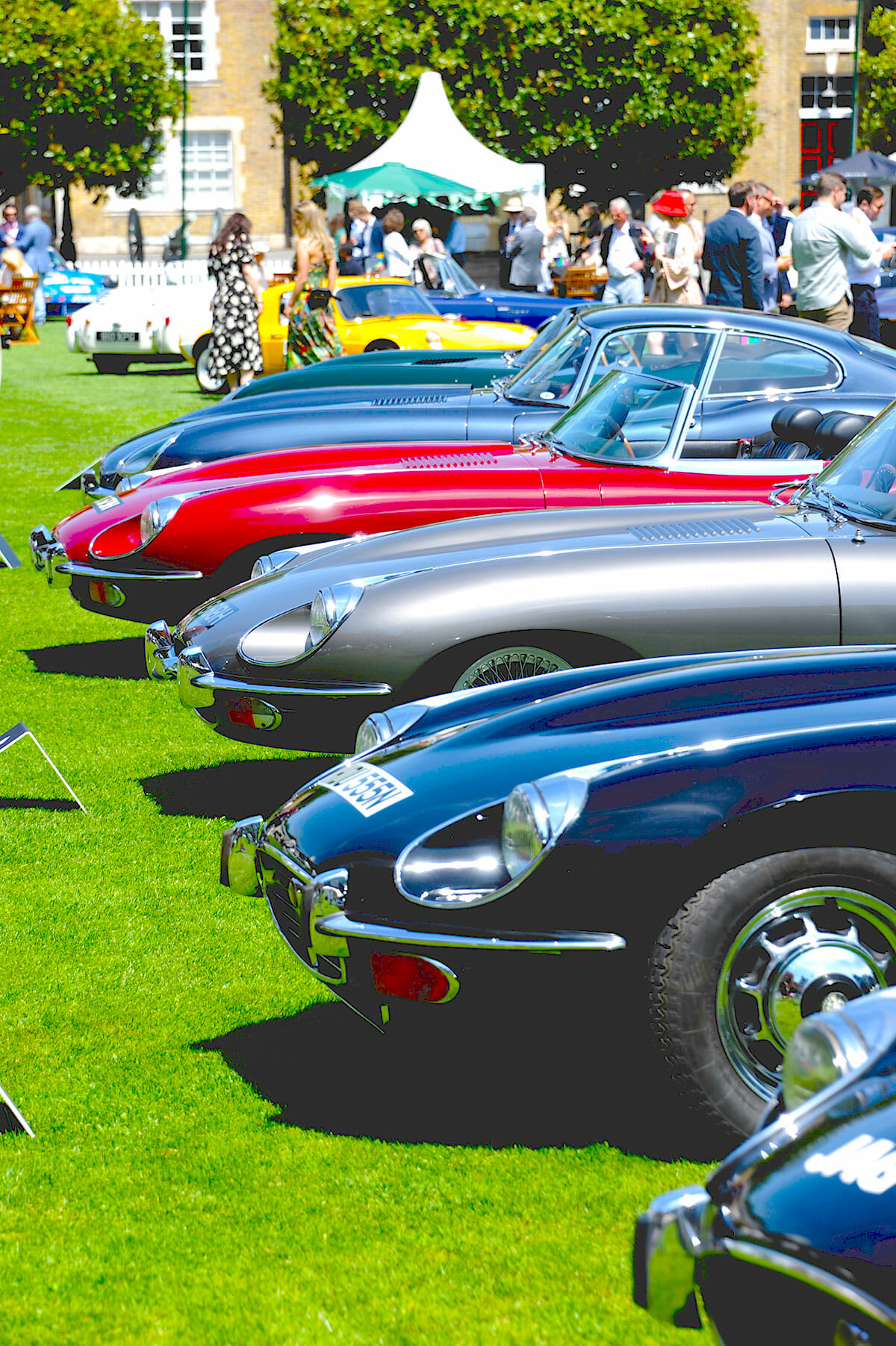 London Concours E-Type Line up